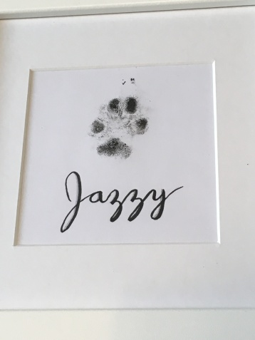 Puppy Jazzy print framed